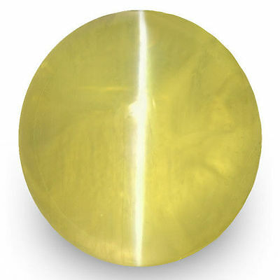 1.89-Carat VS-Clarity Intense Green Yellow Chrysoberyl Cat's Eye from Sri Lanka