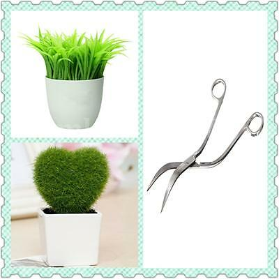 Professional Stainless Steel Curve Aquarium Live Plant Wave Scissors Shear 24cm