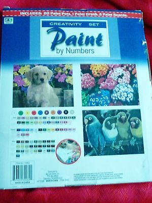 NEW PAINT BY NUMBERS SET 3 Paint Boards BRUSH AND PAINTS by CREATIVE KIDS