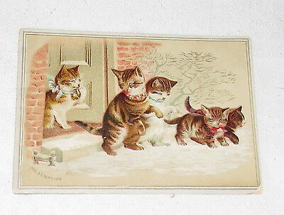 Trading Card Five Cats Kittens Leaving House Vintage. The Departure
