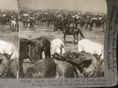 Riders Union S. Africa ready to take field s #V19585 WWI Keystone Stereoview