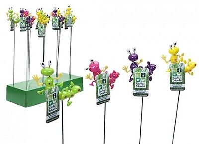 Wholesale-Resellers-24 X HAPPY CATERPILLARS W/MOVING  LEGS ON STAKES