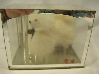 Vintage Mid century Japanese Furry  dog in glass mirror back case