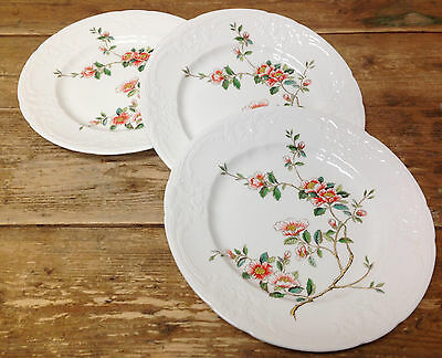 Coalport England Samarkand Asian Apricot Floral Rim 3 Dinner Plates Orange Tree