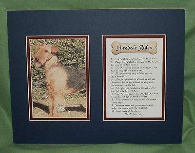 Airedale Terrier  Mat for Picture with Airedale Rules ~New~