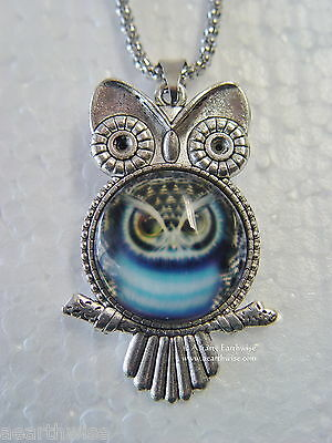 OWL PENDANT WITH GLASS CABACHON AND CHAIN Wicca Pagan Witch Goth  OWL TOTEM