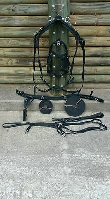 NEW NYLON HORSE DRIVING CART HARNESS WITH SADDLE BRIDLE etc - D/F/C/P/S/M black