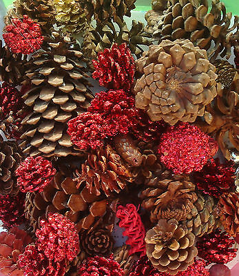 3 pounds real Christmas natual and red gold glittered pine cones small to large