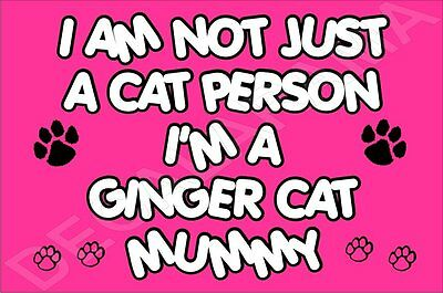 I'M NOT JUST A CAT PERSON I'M A GINGER CAT MUMMY Fridge Magnet GIFT KITTEN