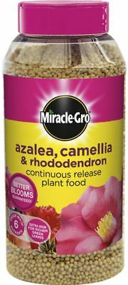 Miracle Gro Slow Release Azalea Camellia & Rhododendron Plant Food Shake Tub 1kg