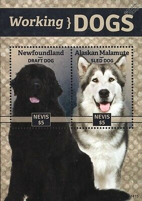 Working Dogs Stamp Sheet (Newfoundland/Alaskan Malamute) 2014 Nevis