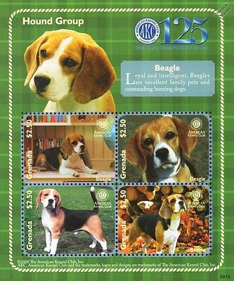 Beagle Dog Stamp Sheet (American Kennel Club Hound Group) 2009 Dominica