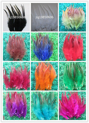 Beautiful 50 pcs /100 pcs rooster tail feathers 10-15 cm / 4-6 inch 15 Colors