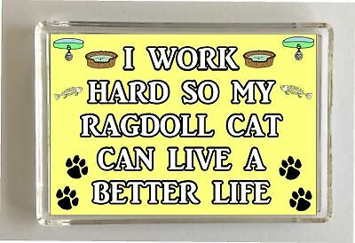 I Work Hard So My Ragdoll Cat Can Live A Better Life Fridge Magnet Gift