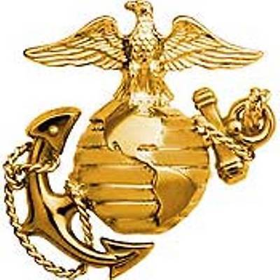 U.S. Marine Corps B1 Left Gold Collar Global Emblem USMC Lapel / Pin 1""