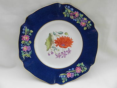 """Spode T Goode London,CABINET PLATE 8.3/4"""" or 22.5cm. No 6."""