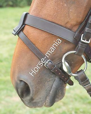Shires Blenheim Leather Flash Strap With Or Without Connector Black Or Havana