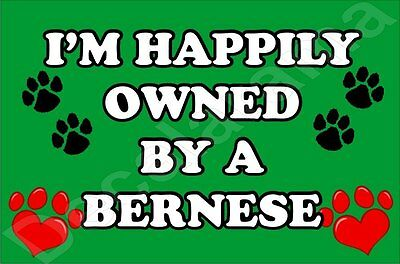 I'm Happily Owned By A Bernese Jumbo Fridge Magnet Gift/present Dog