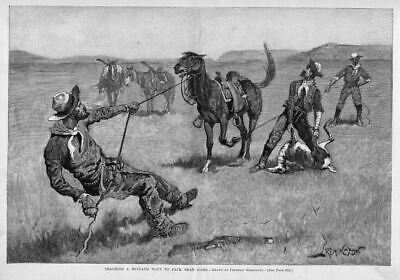Frederic Remington Teaching Mustang Pony Pack Dead Game Cowboy Horses Saddle