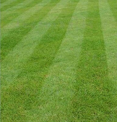 FINE LAWN GRASS SEED FOR EXCEPTIONAL QUALITY LAWNS  (Defra Reg. 7130)