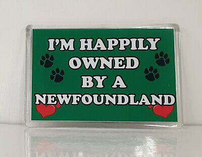 I'm Happily Owned By A Newfoundland Jumbo Fridge Magnet Gift/Present Dog