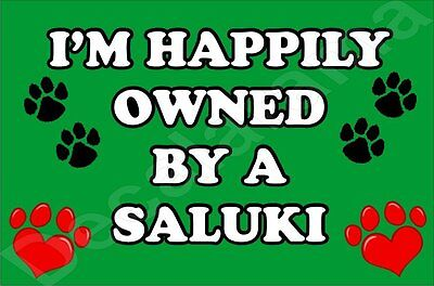 I'm Happily Owned By A Saluki Jumbo Fridge Magnet Gift/Present Dog