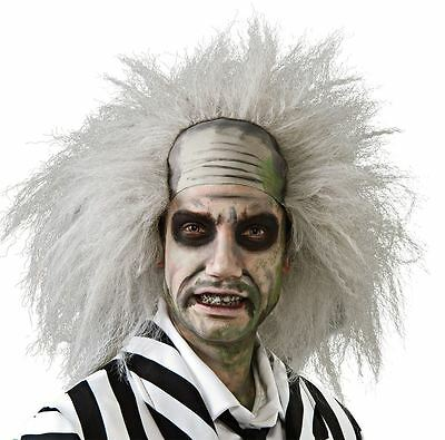 Adult Official Beetlejuice Grey Wig Halloween Fancy Dress Costume Accessory