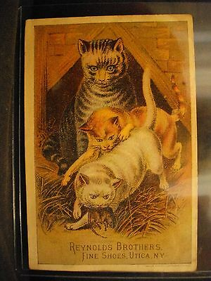 Vintage REYNOLDS BROTHERS SHOES CATS advertisment card VICTORIAN