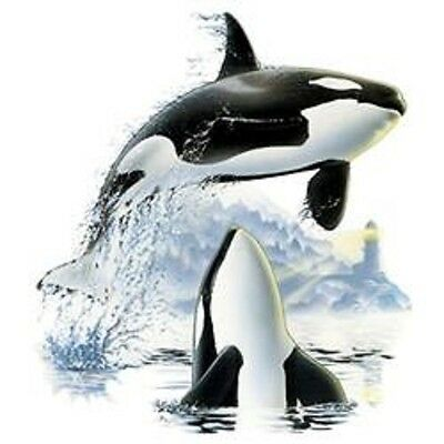 Orca Whale Jumping HEAT PRESS TRANSFER for T Shirt Sweatshirt Tote Fabric #549o