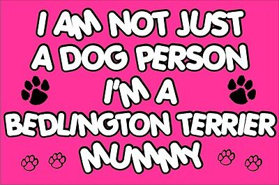 I'M NOT JUST A DOG PERSON I'M A BEDLINGTON TERRIER MUMMY Fridge Magnet Gift
