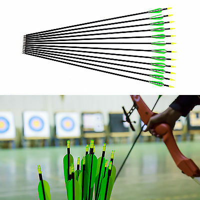 "Archery Fiberglass Arrows 28"" 30"" 32"" Hunting Broadhead Recurve & Compound Bow"