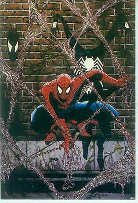 Marvel Comics Postcard: Spiderman with Venom (Todd McFarlane) (USA, 1991)