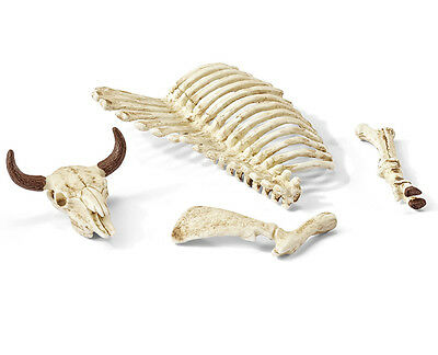 Schleich 42249 Cow Bones Skull Skeleton Model Toy for Diorama Figurine - NIP