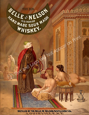 "Belle of Nelson 1878 Vintage Harem Print/ Poster - 8.5"" x 11"" Reproduction"