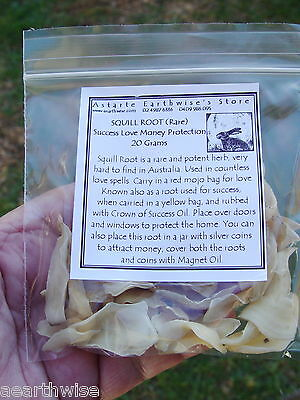 SQUILL ROOT -  20g Wicca Witch Pagan Goth SUCCESS LOVE MONEY PROTECTION