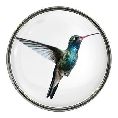 Hummingbird Image Design Metal Fridge Magnet