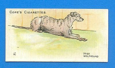 DOGS OF THE WORLD.No.19 THE IRISH WOLFHOUND.COPES CIGARETTE CARD ISSUED 1912