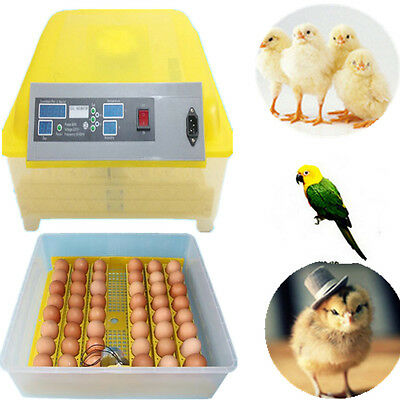 Fully Automatic 48 Digital Egg Incubator Hatcher Temperature Control UK Stock HT