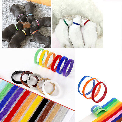 12pcs Puppy Kitten Identification Collar Hook and Loop Whelping ID Collar Band