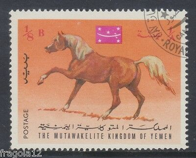 Kingdom North Yemen 1967 - Cavalli - Horses - B. 1/8 - Usato