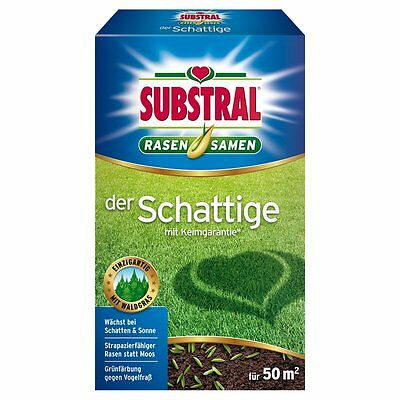 SUBSTRAL Lawn Seed The Shady - 1 Kg - Lawn Seeds Lawn Seed Shadow Grass