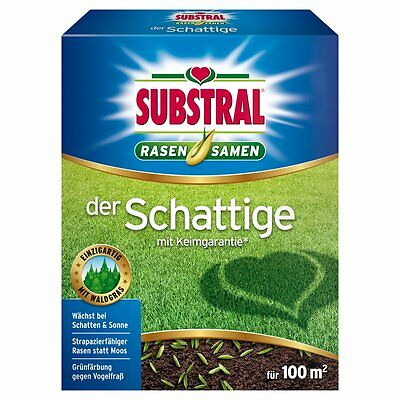 SUBSTRAL Lawn Seed The Shady - 2 Kg - Lawn Seeds Lawn Seed Shadow Grass