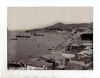 C1795/ Madeira Funchal Portugal altes Foto 1908 23,5 x 17,5 cm