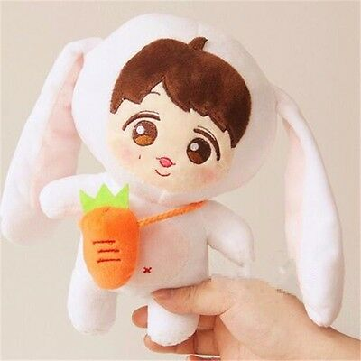 "9"" KPOP EXO Planet#2 Rabbit Issing LAY Plush Toy Doll Cute Handmade"