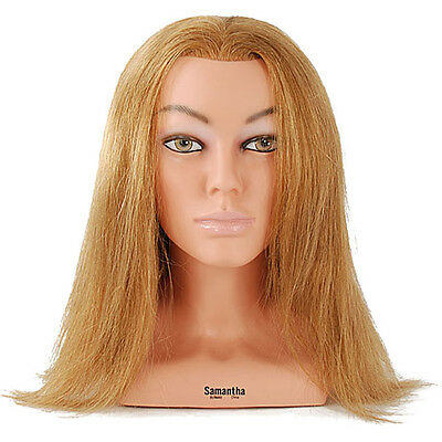 "NEW Celebrity 23"" Cosmetology Mannequin Head w/Shoulders 100% Human Hair - Sam 4"