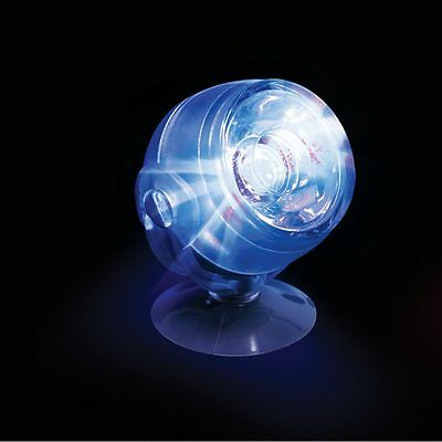 Arcadia - LED Spotlight, submersible - Bleu - éclairage LEDspot Lampe