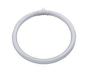 Daylight Lighting : 22W T5 Circular Fluorescent Tube
