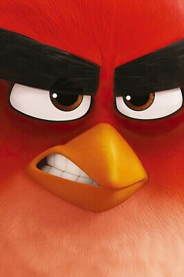 "ANGRY BIRDS - MOVIE POSTER / PRINT (TEASER STYLE RED) (SIZE: 24"" x 36"")"