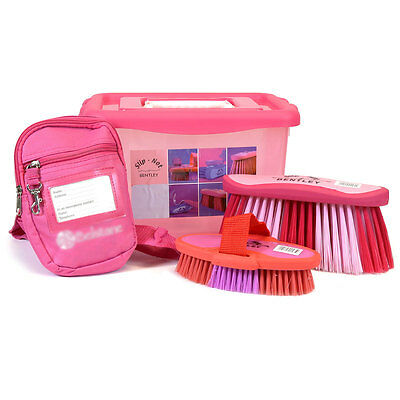 Bentley Equestrian Pink Horse Grooming Kit With Flick Body Brush Carry Box