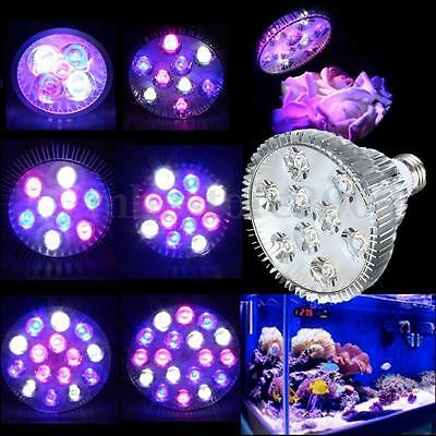 E27 PAR38/PAR30 LED Full Spectrum Coral Plant Grow Light Fish Tank Aquarium Lamp